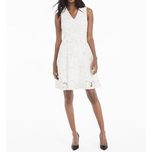 NWT! WHBM Lace Fit & Flare Dress